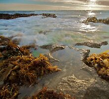 Spray the sun - North Beach, Perth, Western Australia by mcintoshi