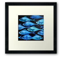 Blue Fish 1 Framed Print