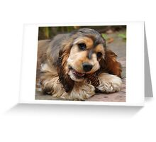 Pine Cone & Cocker Spaniel Greeting Card