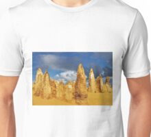 Pinnacles Unisex T-Shirt