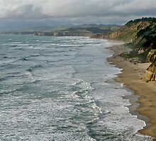 Northern California Coast by Scott Johnson