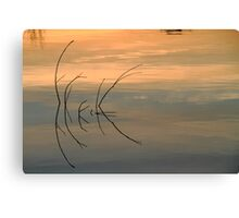 Simple Reflections Canvas Print