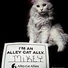 I'm an Alley Cat Ally by ibjennyjenny
