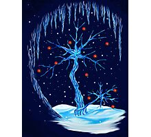 Fantasy Tree- Christmas Card Photographic Print