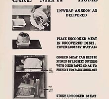 United States Department of Agriculture Poster 0309 Care of Meat in the Home by wetdryvac