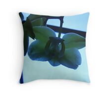 East meets East Throw Pillow