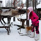 &quot;I kissed a reindeer... by KanaShow