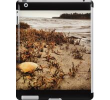 Lonely Shell Along the Shoreline  iPad Case/Skin