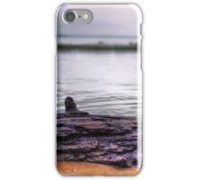 Driftwood on Calm Waters iPhone Case/Skin