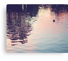 sunset in the water Canvas Print