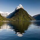 Beautiful Day in Milford Sound by Michael Treloar