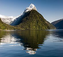 Beautiful Day in Milford Sound by Michael Treloar