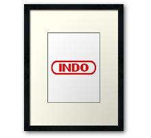 Indo Entertainment System Framed Print