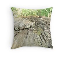 Following the Grains of Wood  Throw Pillow