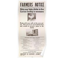 United States Department of Agriculture Poster 0077 Correct Feeding Baby Chicks Poster