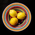 Lemon Delight by Ness Hopkins