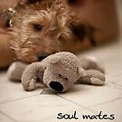 Soul mates by Trish  Anderson