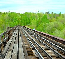 Althea on the Onawa Trestle by RoyceRocks