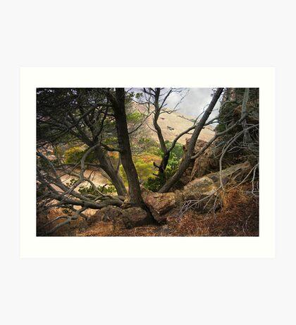 Coyote Hills  Art Print