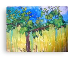 The Lonely Vine Canvas Print