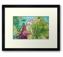 Succulent Rose Framed Print