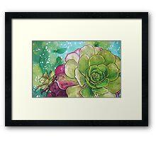 Succulent Rose Framed Print