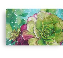 Succulent Rose Canvas Print