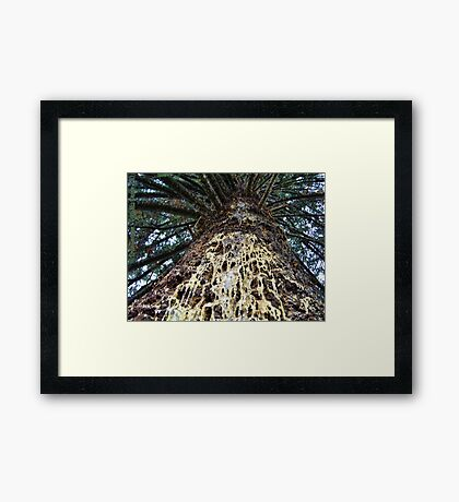 Weeping for the Fallen Framed Print