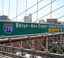 Brooklyn Bridge Road Signs by Frank Romeo