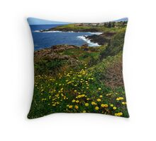 Australia Sydney South Coastline Throw Pillow