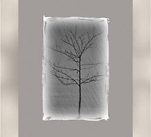 Alone three (series)! by sendao