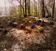 Coon Dog Cemetery, Alabama by concha