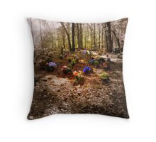 Coon Dog Cemetery, Alabama Throw Pillow