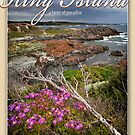 King Island  by Karen Scrimes