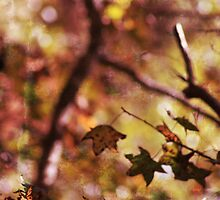 autumn serenade  by leapdaybride