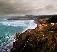 Sea Ranch 13 by Jon Yager