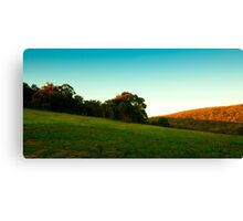 Real not real Canvas Print