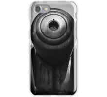 Gun Barrel, Kangaroo Bluff, Tasmania iPhone Case/Skin