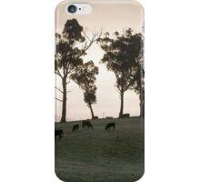 Farm Paddock, Woodstock, Tasmania iPhone Case/Skin