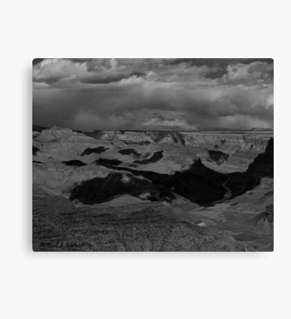 South Rim  Canvas Print