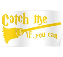 Catch me if you can wizard broomstick magic! Poster