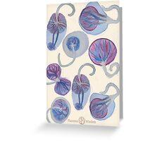 Placenta Greeting Card Greeting Card
