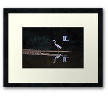Egrets Ballet Framed Print