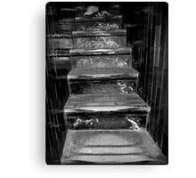 551 Steps Canvas Print