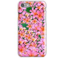 Pink Frangipani Flowers iPhone Case/Skin