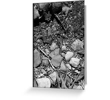 Autumn Ground b&w Greeting Card