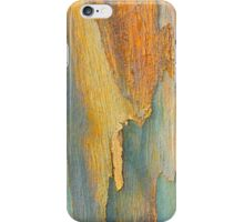 Winter Eucalypt Abstract iPhone Case/Skin