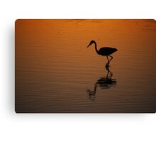 Egret at Sunset Canvas Print