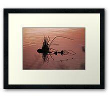 Sunset Reflection Framed Print