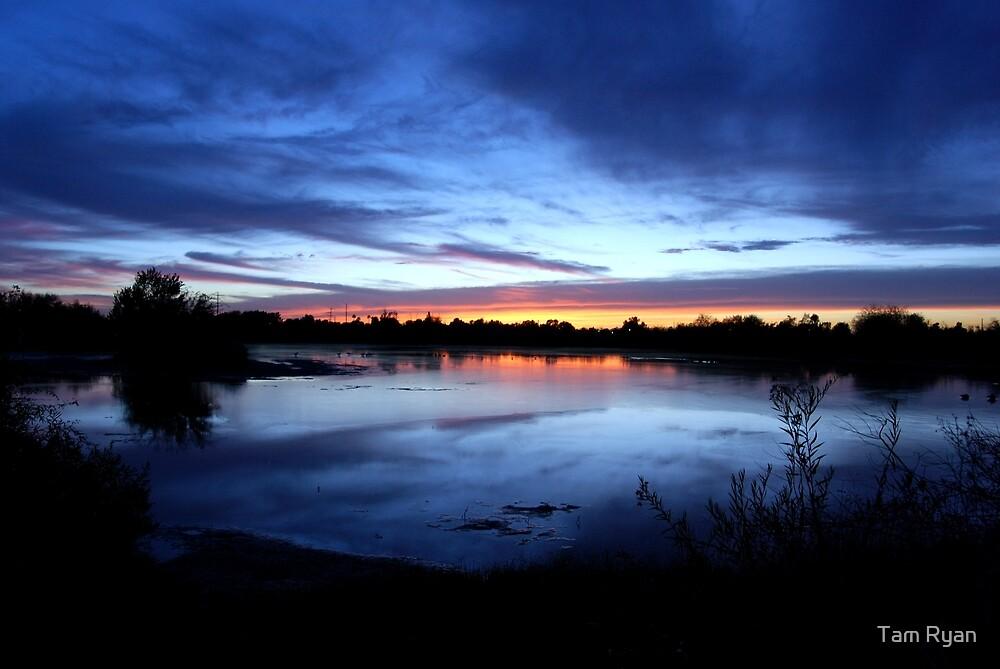 Sunset  by Tam Ryan